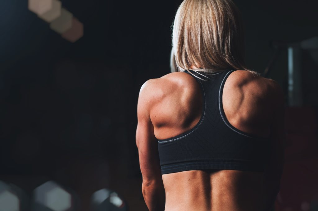 Muscle is the organ of longevity The FitRoom